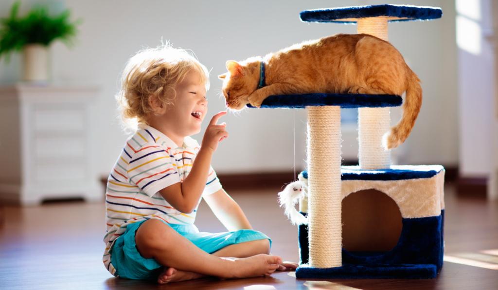 Contacto con animales domésticos